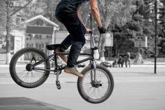 BMX rider does Crankflip on the ramp stock image