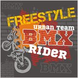 BMX rider - urban team. Vector design. Royalty Free Stock Image