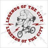BMX rider - urban team. Vector design Stock Photo