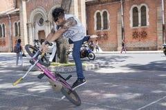 BMX street acrobat Stock Images