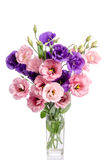 Bündel violette und rosa Eustomablumen Stockbilder