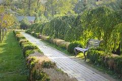 Bänk i en trädgård Royaltyfri Bild