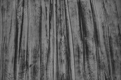 Bnw textur royaltyfri bild