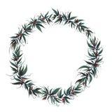 Boże Narodzenia obramiają z liśćmi i jagodą ilustracji