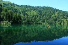 Boçka Lake-3. You can see the every tone of the green color.here is in Artvin/TURKEY Royalty Free Stock Image