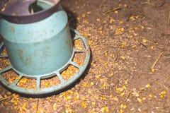 Boîte à alimentation de poulets sur la ferme photo stock