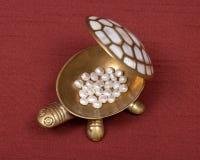 Boîte à bijoux et perles de tortue Photographie stock libre de droits