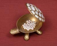 Boîte à bijoux et perles de tortue Photo libre de droits