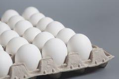 Boîte à oeufs de carton avec les oeufs blancs de poulet Photo libre de droits