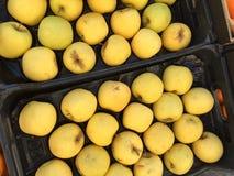 boîte à pomme photographie stock libre de droits