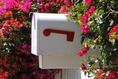 Boîte aux lettres Photo libre de droits