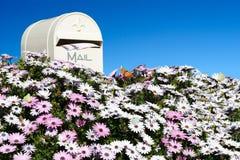 Boîte aux lettres avec des fleurs Photographie stock libre de droits