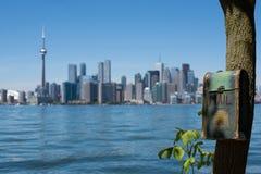 Boîte aux lettres sur l'arbre avec le panorama unsharp de Toronto photo stock
