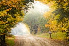 Boîte aux lettres sur un poteau du côté d'un chemin de terre pendant le feuillage d'automne Photo stock