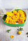 Boîte avec les roses jaunes Photos stock