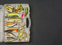 Boîte avec un ensemble d'amorces artificielles de poissons Images libres de droits