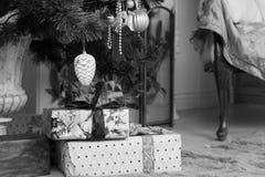 Boîte-cadeau au-dessous d'arbre de Noël dans le monochrome Photographie stock libre de droits