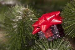 Boîte-cadeau avec un arc Photos libres de droits
