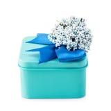Boîte-cadeau bleu-clair Images stock