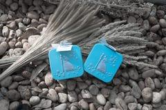 Boîte-cadeau bleus pour le concept de épouser et d'amour Photos stock