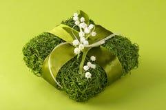 Boîte-cadeau créatif d'herbe verte Photographie stock libre de droits