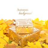Boîte-cadeau en papier d'emballage d'or avec des feuilles d'automne Photo stock