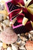 Boîte-cadeau et coquilles Photo libre de droits
