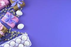 Boîte-cadeau réglé de Pâques avec l'oeuf blanc de chatons de branches Images stock