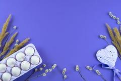 Boîte-cadeau réglé de Pâques avec l'oeuf blanc de chatons de branches Images libres de droits