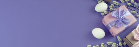 Boîte-cadeau réglé de Pâques de bannière avec l'oeuf blanc de chatons de branches Images libres de droits