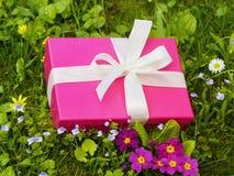 Boîte-cadeau rose Photos libres de droits