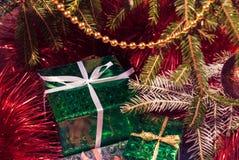 Boîte-cadeau vert sous des branches d'arbre de Noël images stock