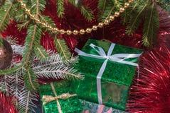 Boîte-cadeau vert sous des branches d'arbre de Noël photographie stock