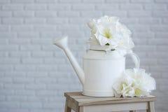 Boîte d'arrosage avec des fleurs sur un fond blanc Photo stock