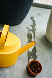 Boîte d'arrosage jaune avec le pot sec de tonne Image libre de droits