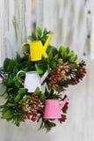 Boîte d'arrosage miniature colorée de jardin sur un fond des buissons photo stock