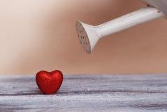 Boîte d'arrosage rose arrosant l'amour remplissant de crochet rouge de coeur ensemble Concept d'amour Photographie stock libre de droits