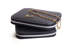 Boîte de bijoux Photo stock