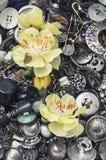 Boîte de boutons Image stock