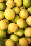 Boîte de citrons verts et jaunes siciliens Images libres de droits