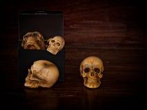 Boîte de crâne Photo stock