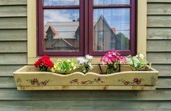 Boîte de fleur Images stock