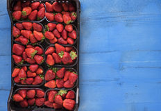 Boîte de fraises parfaites mûres fraîches sur le fond en bois rustique bleu Images libres de droits