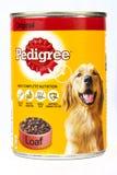 Boîte de les aliments pour chiens de pure race image stock