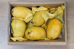 Boîte de mangues mûres Photographie stock