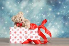 Boîte de Noël Photographie stock