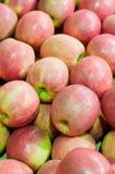 Boîte de Papper contenant les pommes rouges Image stock
