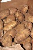 Boîte de pommes de terre Photos stock