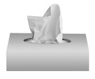 Boîte de serviettes images libres de droits