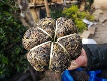 Boîte en bambou pendant 400 années de secteur de thé de province de Phongsali, Laos Images libres de droits